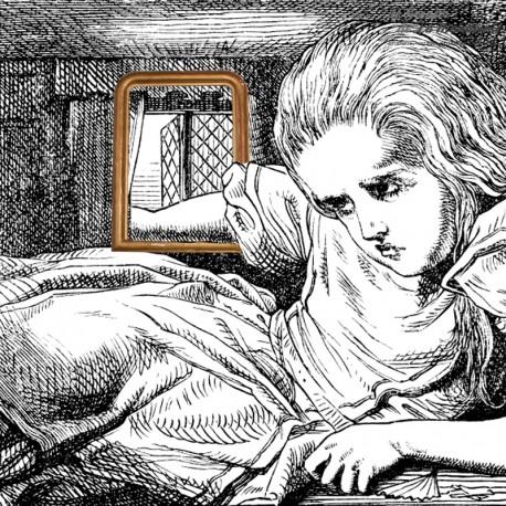 Miroir ancien style Louis Philippe au mercure 94,5 cm x 70 cm. French antique